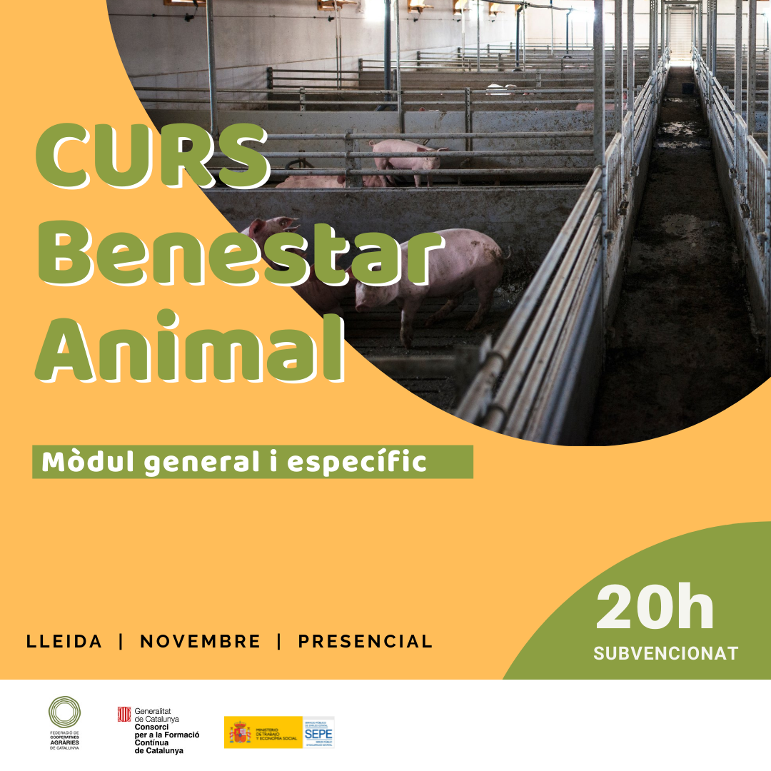 Curs BENESTAR ANIMAL