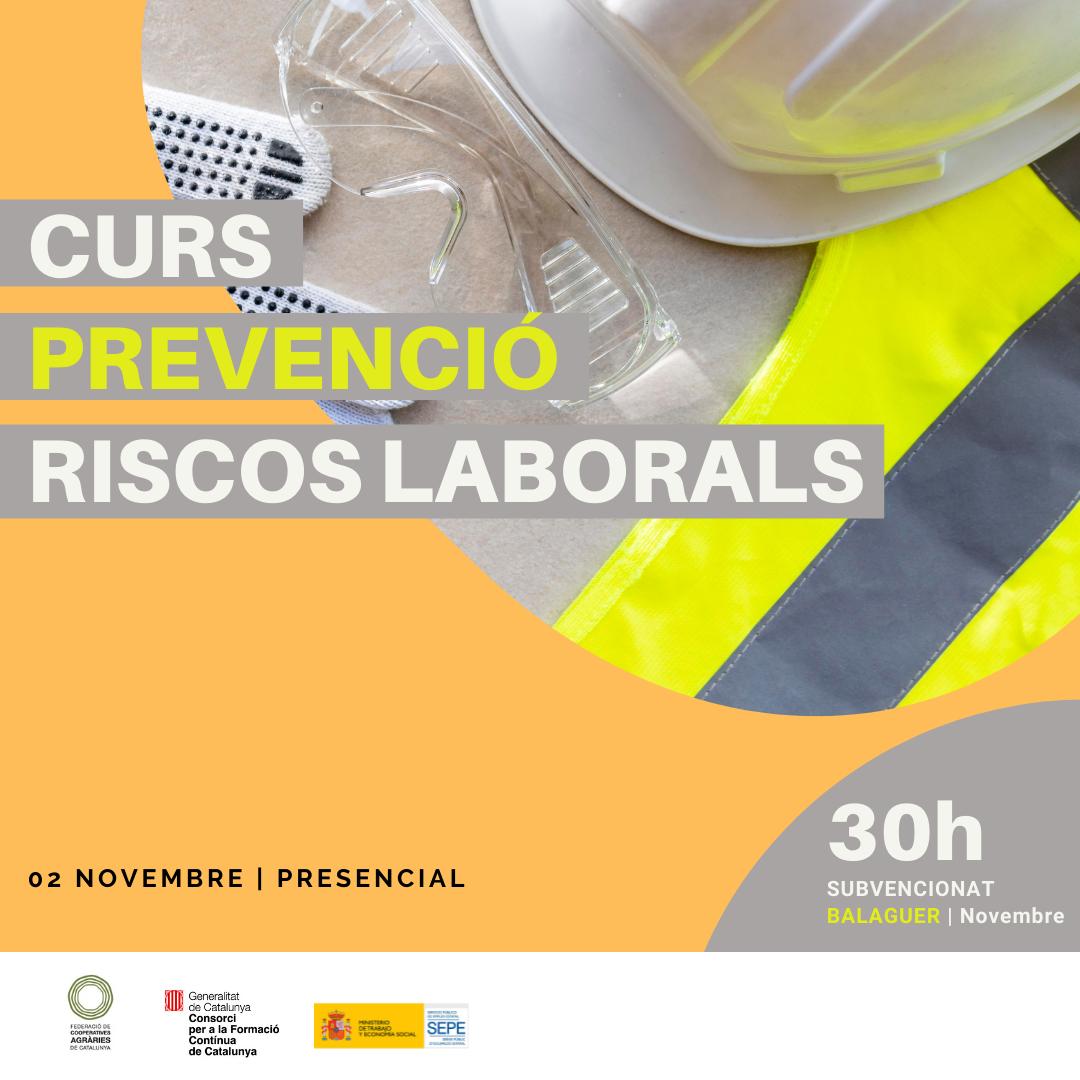 Curs Prevenció De Riscos Laborals