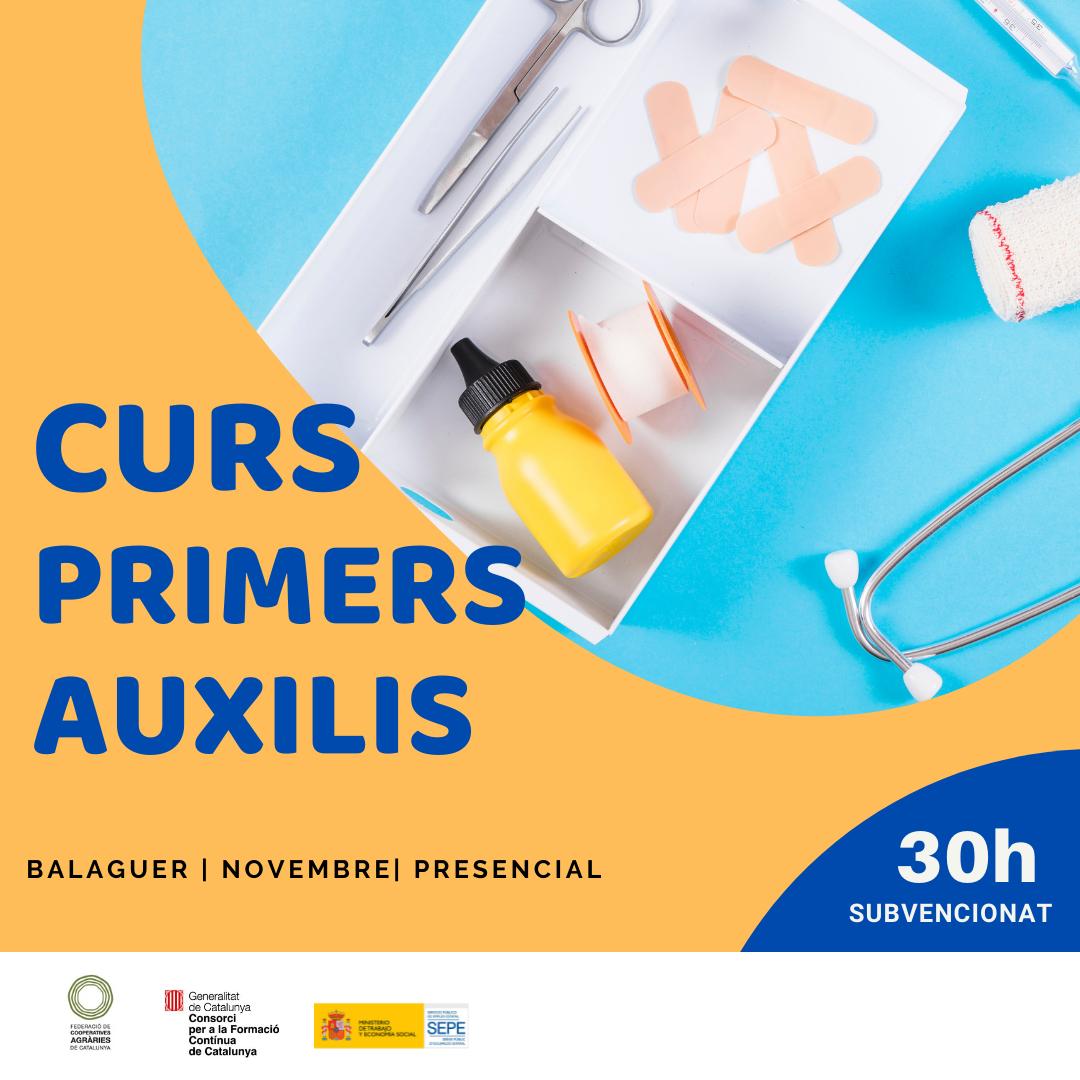 Curs PRIMERS AUXILIS